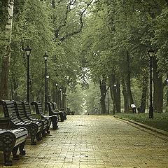 """фото """"Rainy Kiev"""""""