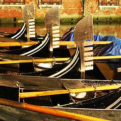 """фото """"Venecia"""""""
