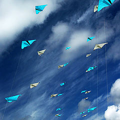 """photo """"Kite competition"""""""