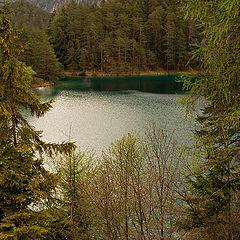 "photo ""Green lake"""