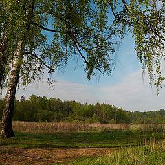 "photo ""Simple russian landscape."""