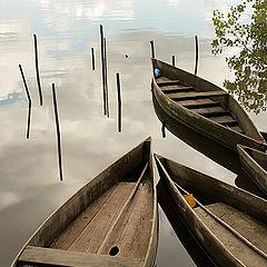 "фото ""Boats"""