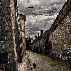 "фото ""в переходах древнего замка"""