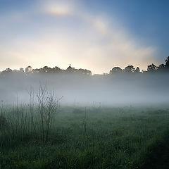 "фото ""Долина утром # 2 Солнечное гало"""
