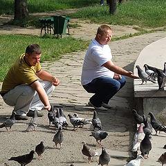 """фото """"Кормежка голубей"""""""