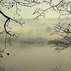 "фото ""Туманные дали..."""