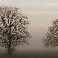 "фото ""... tuesday morning - 7am"""