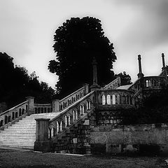 """photo """"Stairs of loneliness"""""""