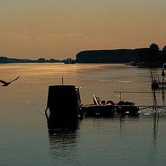 "photo ""Na Dunavu"""