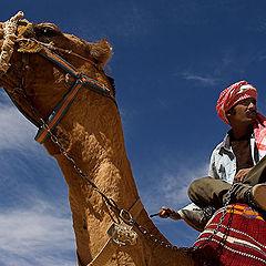 """фото """"Небожители пустыни"""""""
