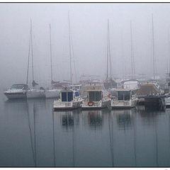 """фото """"Foggy day"""""""