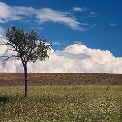 """фото """"И опустилось облако на землю"""""""