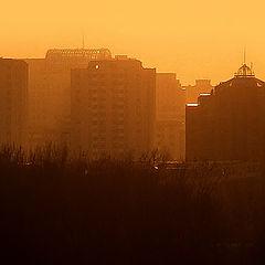 """photo """"Novi Sad"""""""