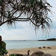 """photo """"On the beach"""""""