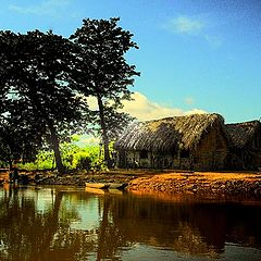 """photo """"Pantanal"""""""