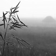 "фото ""Холодное дыхание осени"""