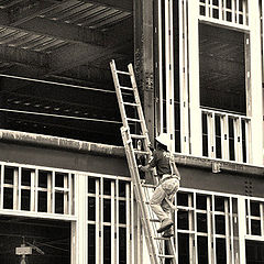 "photo ""Ladder Up"""