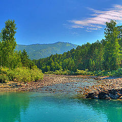 "photo ""Altay River's"""