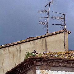 """photo """"rural Spain"""""""