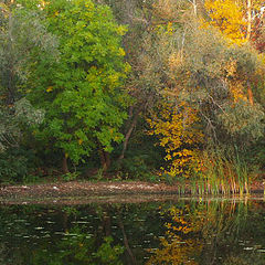 "фото ""тут живет осень"""