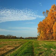 """photo """"My lovely autumn (3)"""""""