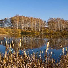 """фото """"Осенний пейзаж"""""""