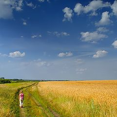 """photo """"The road to summer"""""""