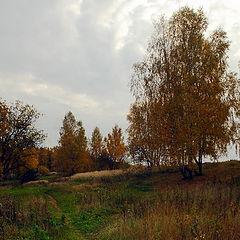 "фото ""Уж небо осенью дышало..."""