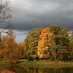 "photo ""Palette of autumn"""