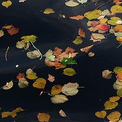 """фото """"уплывает осень..."""""""
