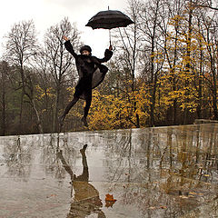 "photo ""The flight in rainy weather .."""