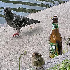 """photo """"Beer at three."""""""
