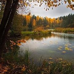 """photo """"At lake."""""""