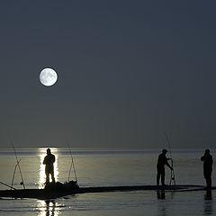 "photo ""Moonlight Fishing"""