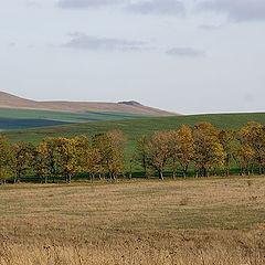 """photo """"The Caucasian autumn"""""""