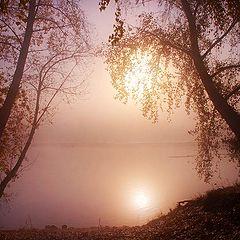 """фото """"утренний сон"""""""