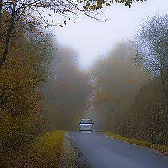 "фото ""Autum driving"""
