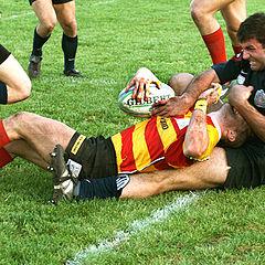 """фото """"rugby_Слушай, отдай дыню по хорошему..."""""""