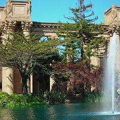 """фото """"Walter S. Johnson Park, San Francisco, CA"""""""