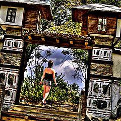 "photo ""On adventure"""
