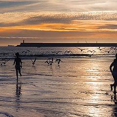 "photo ""Running on the beach"""