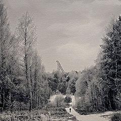 "photo ""The Winter Lost"""