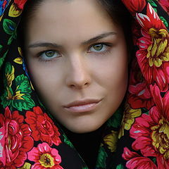 "photo ""Wildflowers"""