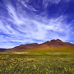 "фото ""Summer on Iceland"""