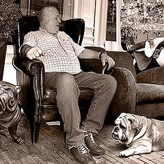 "photo ""Three Bulldogs"""