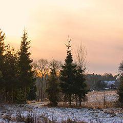 "фото ""Начало зимы"""