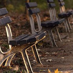 "фото ""Autumn Cliches"""