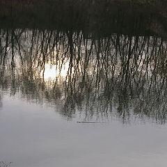 """фото """"Немного солнца в холодной воде"""""""