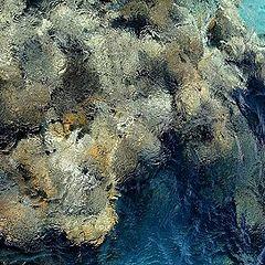 "фото ""Море импрессионизма"""