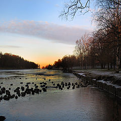 "photo ""The Dawn Freezing"""